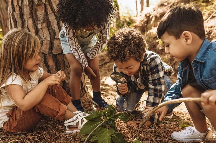 Crianças brincando em floresta