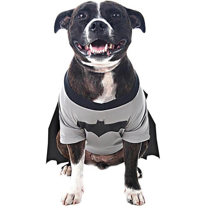 Fntasia para cachorro batman